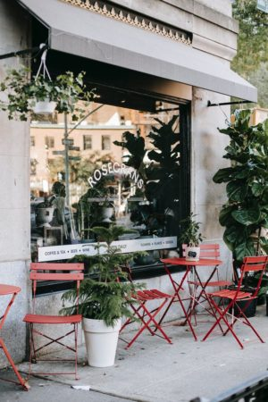 cozy street cafeteria with minimalist furniture and green plants in sunlight